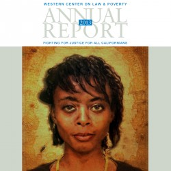 2013 WCLP Annual Report